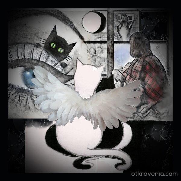 """По """"Когда у меня был кот"""" от Сенилга (Сенилга)"""