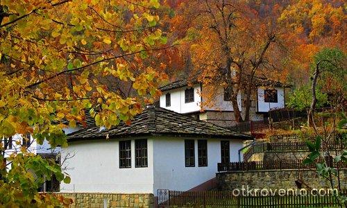 Есен в Боженци