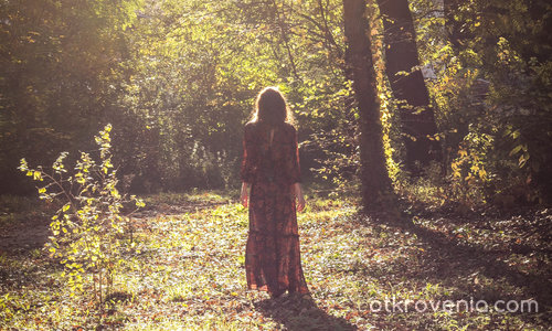 Сред гората