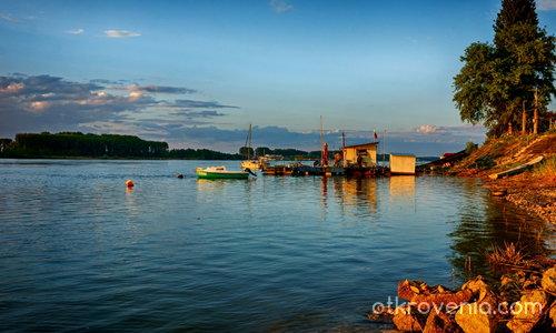 Дунавски вечери