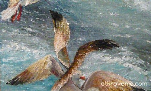 Птици,море,лято