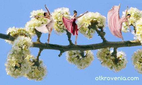 Пролетен балет