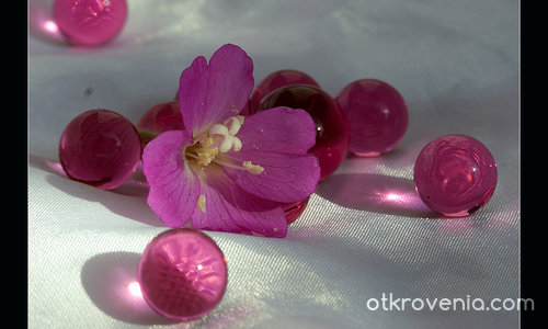 Розови перли