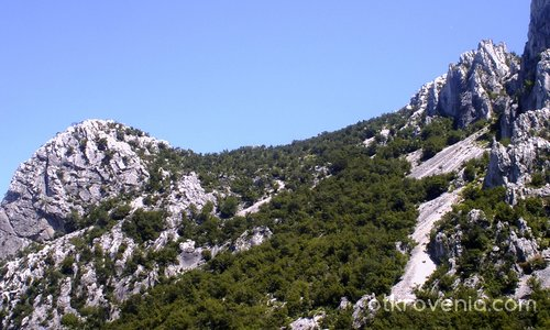 Врачански Балкан Скали