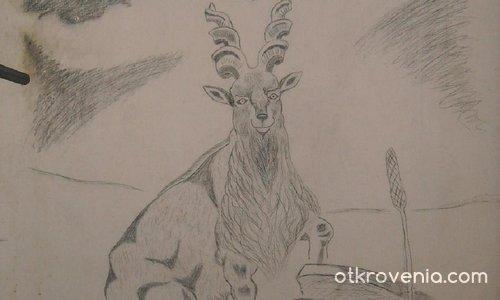 Винторог козел