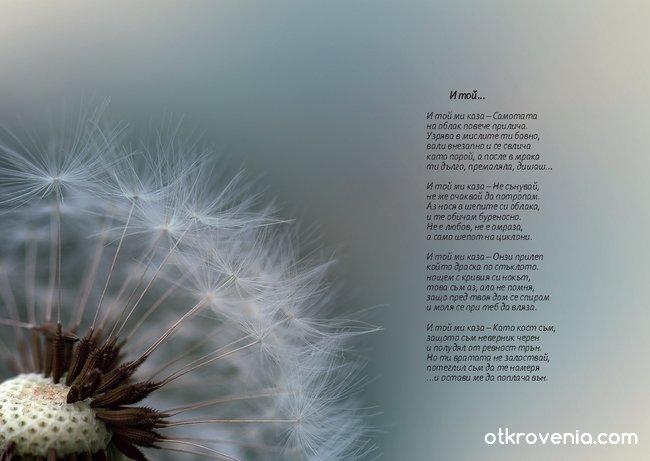 Из бъдещата ми книга с фотоси и стихове