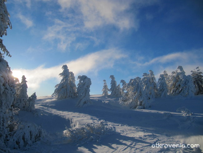 Танцът на зимата
