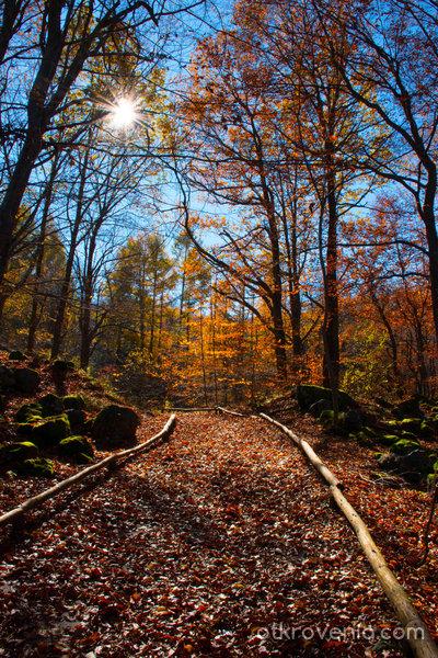 Пътека към есента