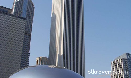 The Bean / The Kidney