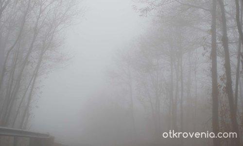 Тишината на мъглата
