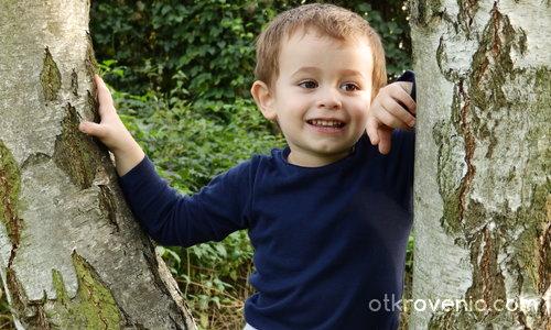Щастие в детските очи