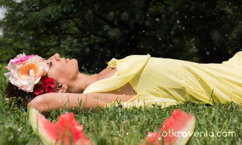 Мечта в тревата