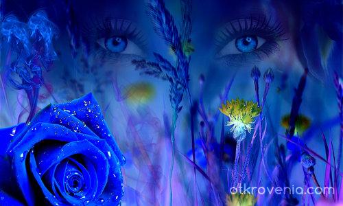 Магията на сините очи