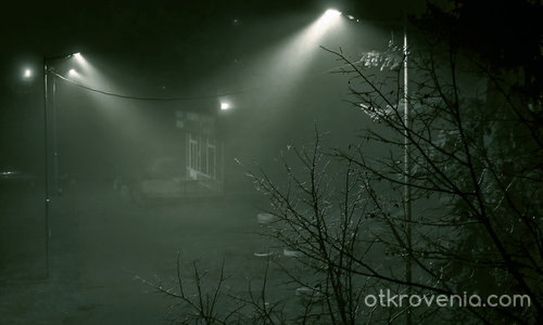 Мистика в мъглата