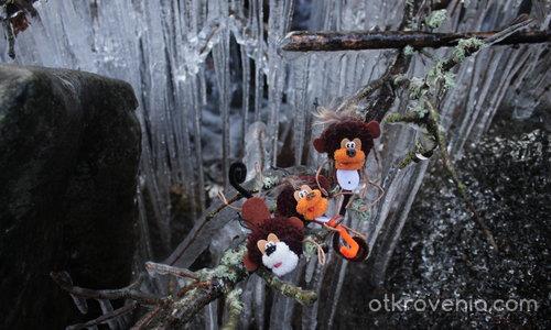 Маймуни Анти-изневяра!