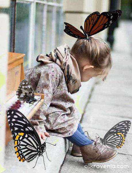 Малката приятелка на пеперудите