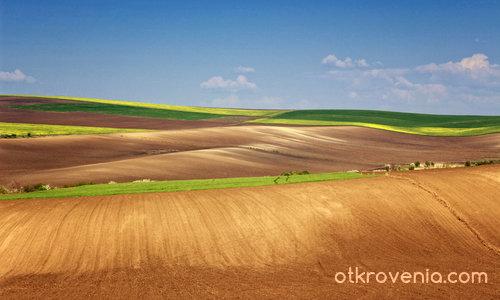 Земята е пролетна палитра...