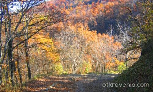 есеннен пейзаж