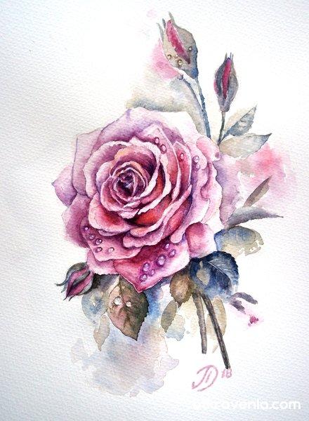 Розата...