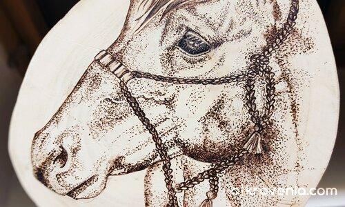 Среднощният ездач