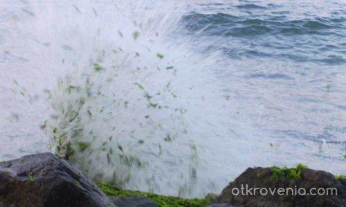 Вълните искат да ни кажат нещо../Да ни докоснат/
