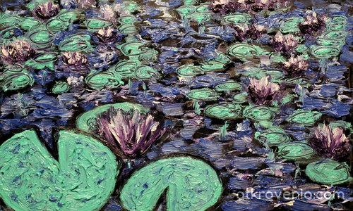 Нощно-цъфтящите водни лилии