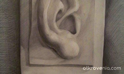 отрязана глухота