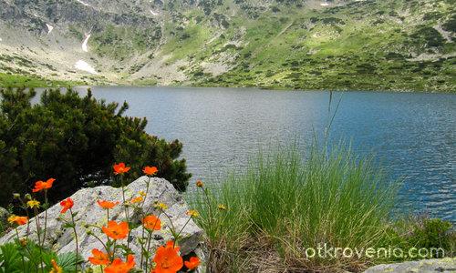 Горното рибно езеро