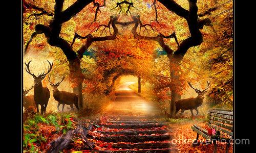 Листопад (По есенния път)