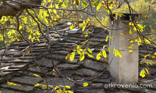 Етюд за орех,комин и един Боженски покрив