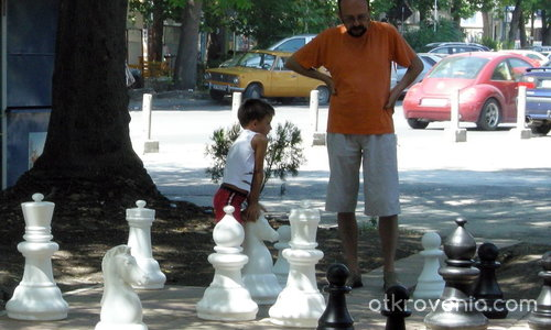 Шах и мат !!!