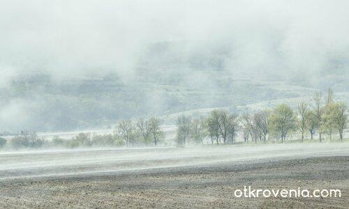 По стъпките на мъглата