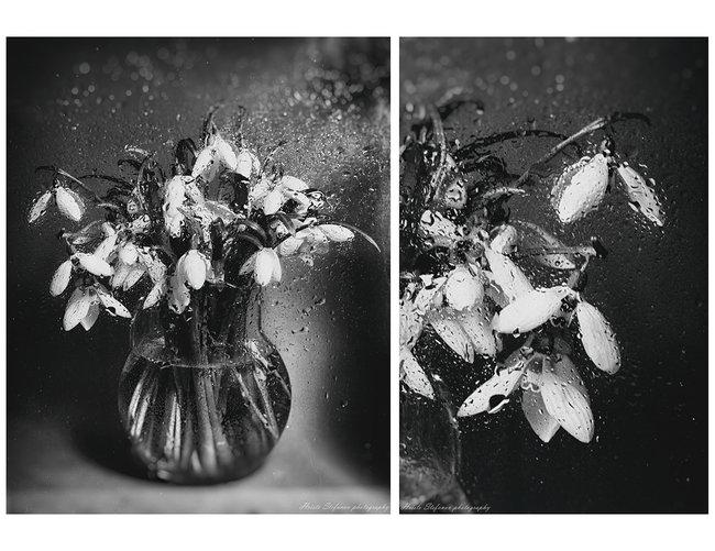 Пролетна меланхолия