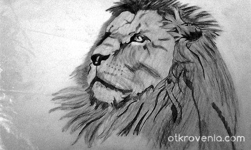 Aз съм царят на джунглата