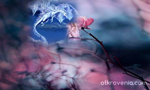 Любов - дракон и фея