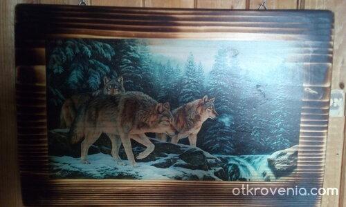 Духът на дивия вълк