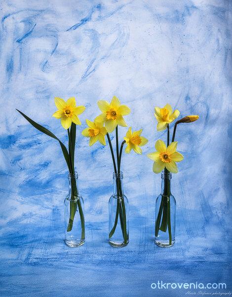 Пролетен етюд