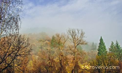 Мъглата през ноември сутрин