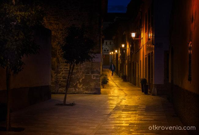 Из уличките на Алкудиа