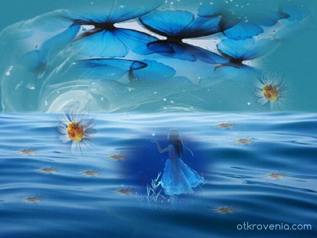 Сред море от цветя и небе от пеперуди