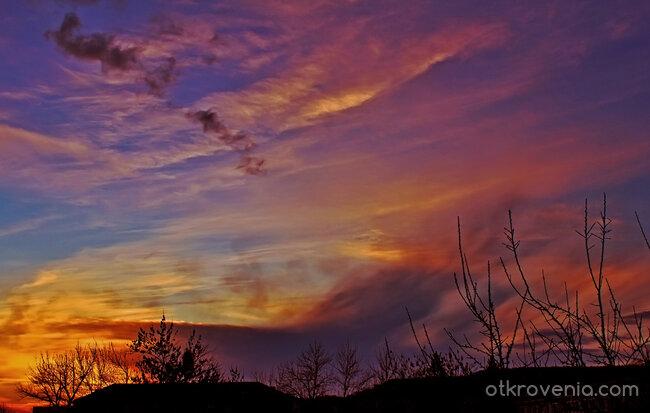 Вечерни цветове