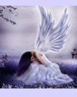 Ангелче13 (Паднал ангел)