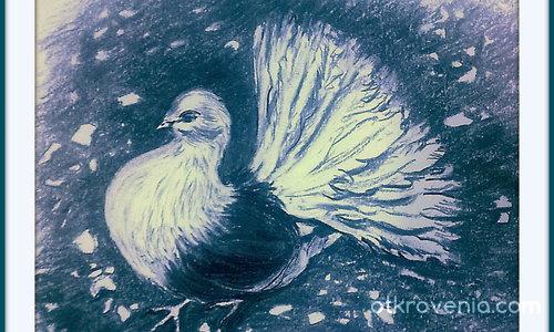 Моят гълъб