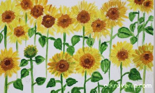 Слънчеви слънчогледи