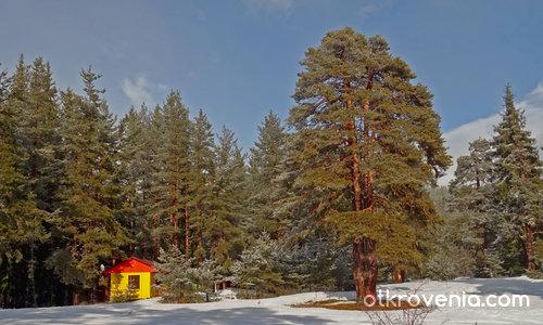 Къщичка в снега се гуши