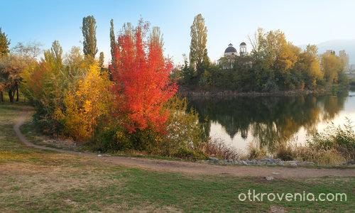 Есен в града
