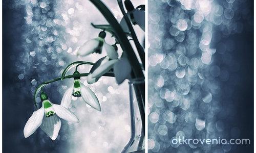 Пролетно вълшебство