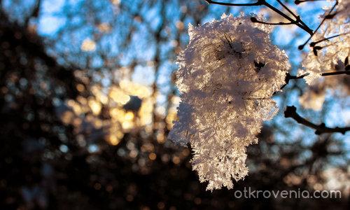 Как топли зимното слънце... (Февруарски щрих)