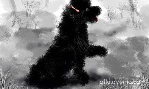 Кученце :)