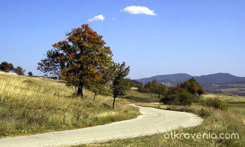 Между лятото и есента!